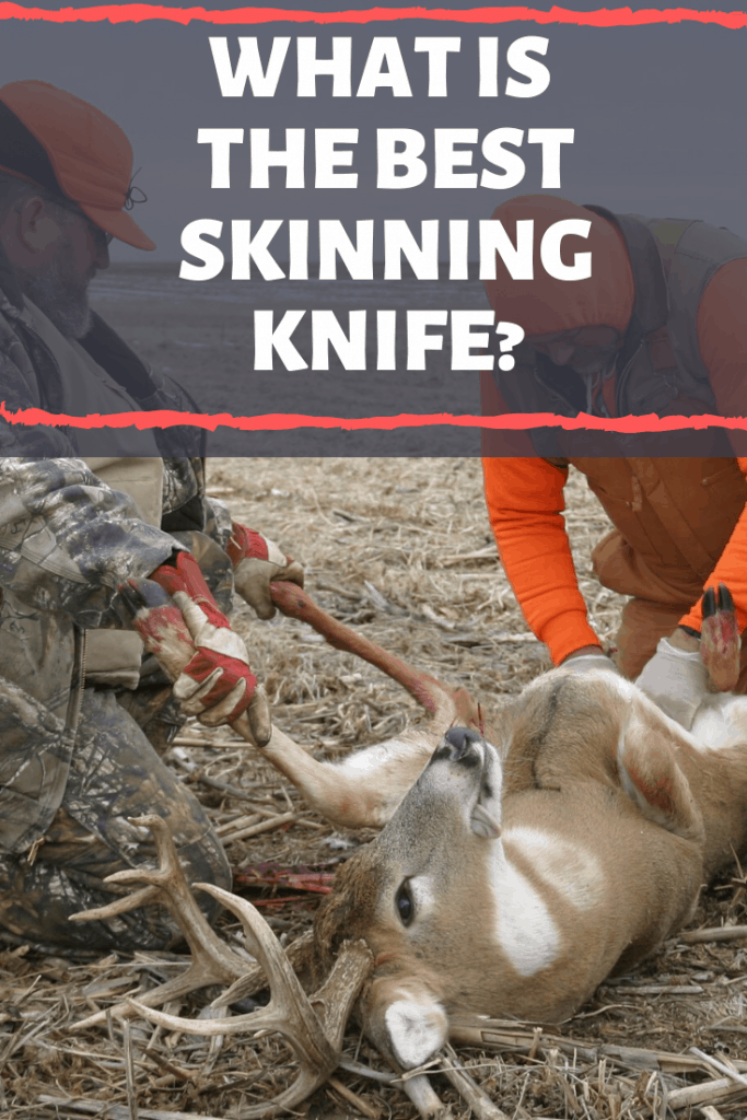 What Is The Best Skinning Knife?